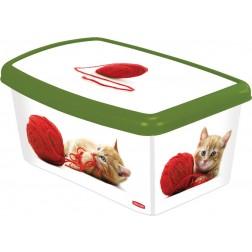 Caja decorada para ccesorios de gato Curver
